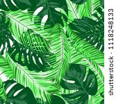 vector monstera and palm leaves.... | Shutterstock .eps vector #1118248133
