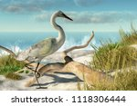A White Egret Stands Among Som...