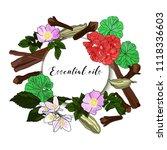 vector drawn essential oils...   Shutterstock .eps vector #1118336603