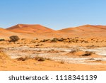dunes with acacia trees in the... | Shutterstock . vector #1118341139