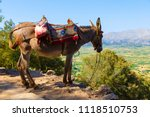 tourists transported by donkeys ... | Shutterstock . vector #1118510753
