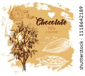 hand drawn sketch cocoa... | Shutterstock .eps vector #1118642189