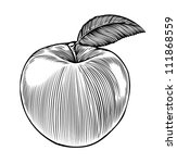 Apple In Engraving Style