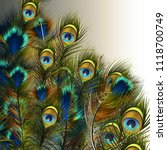 fashion vector peacock feathers ... | Shutterstock .eps vector #1118700749