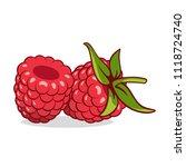 raspberries. macro vector... | Shutterstock .eps vector #1118724740
