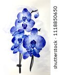 watercolor blue orchid | Shutterstock . vector #1118850650