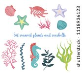 set of seaweed  coral and... | Shutterstock .eps vector #1118936123