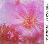 Small photo of Faded blurry pink flower on pink background. Pink Delia on pink background. Double exposure picture