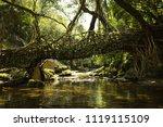 living root bridge  meghalaya | Shutterstock . vector #1119115109