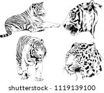 set of vector drawings on the... | Shutterstock .eps vector #1119139100