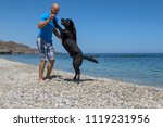 man with his dog on the beach. | Shutterstock . vector #1119231956