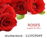 Stock photo red roses bouquet isolated on white background with sample text 111925049