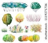 watercolor hand drawn set of...   Shutterstock . vector #1119271736