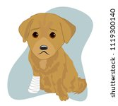 labrador puppy with an injured... | Shutterstock .eps vector #1119300140