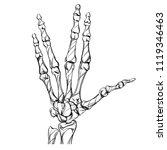 skeleton is a sketch. bones... | Shutterstock .eps vector #1119346463