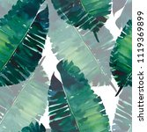 bright green herbal tropical...   Shutterstock . vector #1119369899