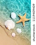 starfish and seashell on the... | Shutterstock . vector #1119409409