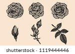 rose vector lace by hand... | Shutterstock .eps vector #1119444446