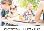 Stock photo happy friends doing breakfast brunch meal in nature with home pet young people having fun with 1119571106