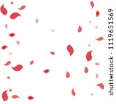 abstract flower petals confetti ... | Shutterstock .eps vector #1119651569