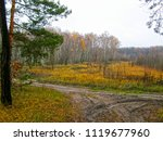 beautiful swamp and autumn... | Shutterstock . vector #1119677960