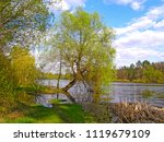 beautiful spring forest and lake | Shutterstock . vector #1119679109