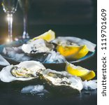 fresh oysters close up on blue... | Shutterstock . vector #1119701609