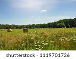 A Field In A Rural Area Of...