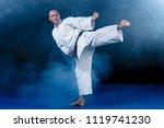 white karate fighter isolated...   Shutterstock . vector #1119741230