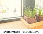 grass in a beautiful vase for... | Shutterstock . vector #1119833393