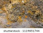 full frame background showing... | Shutterstock . vector #1119851744