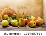 fresh pears with leaves on... | Shutterstock . vector #1119857516