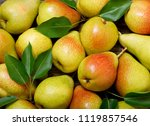 Fresh Pears With Leaves As...