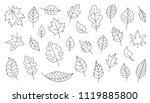 simple leaves line on the white ... | Shutterstock .eps vector #1119885800