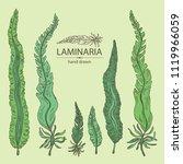 collection of laminaria ... | Shutterstock .eps vector #1119966059