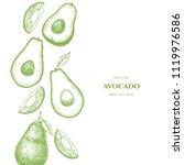 vector frame with avocado. hand ... | Shutterstock .eps vector #1119976586