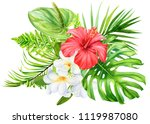 tropical flowers  hibiscus ... | Shutterstock . vector #1119987080