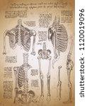 leonardo da vinci sketches.... | Shutterstock .eps vector #1120019096