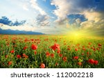 field with green grass and red... | Shutterstock . vector #112002218