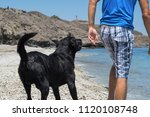 man with his dog on the beach. | Shutterstock . vector #1120108748
