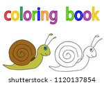 book coloring  snail | Shutterstock .eps vector #1120137854