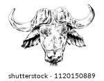 powerful huge buffalo with... | Shutterstock . vector #1120150889