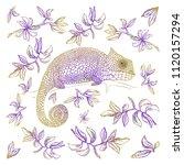 vector illustration. card... | Shutterstock .eps vector #1120157294