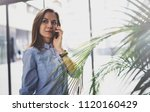 charming young business woman... | Shutterstock . vector #1120160429
