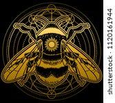 bumblebee hand drawn vector... | Shutterstock .eps vector #1120161944