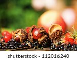 autumnal fruits in autumnal light - stock photo