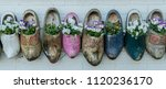 Old Wooden Clogs With Blooming...