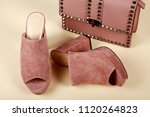 woman shoes with accessories | Shutterstock . vector #1120264823