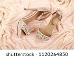 woman shoes with accessories | Shutterstock . vector #1120264850