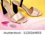 woman shoes with accessories | Shutterstock . vector #1120264853
